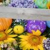 【夏詣】郡山市の豊景神社で夏の花手水を楽しんできました!