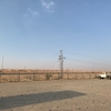 UAE旅行記 Day1(3) 〜デザートサファリ〜