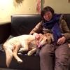 """旅人生初、犬にじっくり見送られ現在""""ファナロス""""中"""