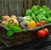 野菜と硝酸態窒素