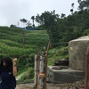 ネパール30日目 調査地へ!家の工事お手伝い!