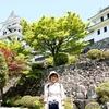 日本 背景は郡上八幡の八幡城