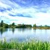『道の駅ビーナスライン蓼科湖』と『蓼科温泉 小斉の湯』のレポート