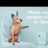 夢を叶えられ、犬の命を救うことができる音楽サービス・Adoptify