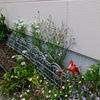 今週もアパートへ ~夏花壇の準備~