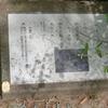 万葉歌碑を訪ねて(その573,574,575)―西宮市西田町西田公園万葉植物苑(7,8,9)―万葉集 巻二 二三一、巻三 三三六、巻三 三三〇