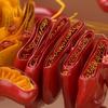 【水素セラピスト検定】ヘルスケア編 『細胞の基礎 Part.3』