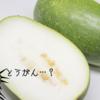 【ダイエット中DEMOしっかりごはん!】冬瓜のすばらしさを熱く語ります!