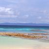 〈忘れ潮〉の沖縄紀行2016…波照間島②/   南十字星とサトウキビ畑と〈幻の泡盛〉の島