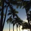 ハワイ旅行・笑えるぷちハプニング
