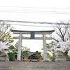 豊国神社の桜。見頃や開花状況。