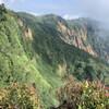 【日本二百名山】鳥甲山 真夏のムジナ平 ー 屋敷登山口コース