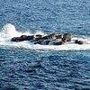 海賊狩りの日蓮(後編) ―ワンピースでたどる日本史―