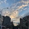 代々木上原不動産 賃貸 毎日速報!!11/7(木)