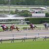 ダ1000m(2歳戦)種牡馬別ランキング