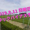 2019,8,11 日曜日 トラックバイアス予想 (新潟競馬場、小倉競馬場、札幌競馬場)