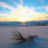もう一度行ってみたい北米(アメリカ+カナダ)の大自然/国立公園ベスト5