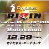 年末格闘技RIZINの対戦カード情報