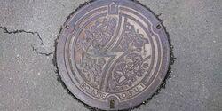 京都府南丹市のマンホール