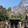 岩屋寺(いわやじ)