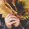 ひさしぶりの号泣|秋の音楽会と心の中のもうひとりの自分