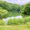 ぶなが池( 新潟県十日町)