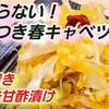 やみつき春キャベツ ピリ辛甘酢漬け 作り置き キャベツ大量消費