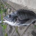 筋トレと釣りのブログ