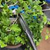 5月は「芽つみ・剪定・針金かけ、暖地性樹種の植え替え、施肥、消毒」。つまり、やることたくさん。