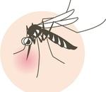 蚊の対策と日焼け止めが1つに!ガーデニングや草むしりにお勧めアイテム!