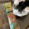 レモン牛乳のナイススティックを買ってみた!