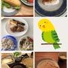 【32w3d】17/05/25の食事