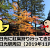 日光に紅葉狩り行ってきた(2019年11月):日光駅~東照宮周辺(日光)