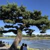 京都 嵯峨嵐山散歩〜「嵯峨野湯」