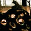 暖冬の丸の内・Olympus OM-2n, G. Zuiko 1.4/50mm w/natura 1600
