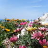 世界一周ピースボート旅行記 30日目~ギリシャ(サントリーニ島)~③「イアの町、寄り道」