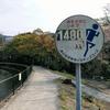 山科疎水(琵琶湖疎水)をランニング -春編ー