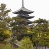 腰痛ツーリング京都や三重、奈良などである/オートバイ  〜茶どころ街道をひた走り、奈良の都で腰は伸びてペケは寝転ぶ〜
