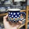 ポーランド陶器の街「ボレスワヴィエツ」で、ポーリッシュポタリーのお店巡り!