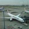 【JAL】4月に行った香港 JL029 HND→HKG エコノミークラス搭乗記