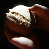 父のパン 息子のパン