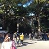 明治神宮で初詣