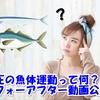 【魚体運動で確認】足圧施術で体の筋肉がほぐれるってホント?ビフォーアフター動画公開!