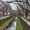 麻生川と片平川 鶴見川支流を歩く