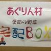 ふるさと納税の返礼品で愛知県長久手市から『あぐりん村 季節の野菜 宅配BOX』が届きました