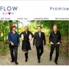 PROMISE/ FLOW