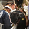 【奇祭】牛乗り・くも舞いを見に行く