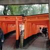 ぼっち旅in京都 2日目