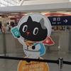 【台北①】タイガーエアで行ってきた!