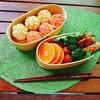 【お弁当】鮭と卵そぼろの手まり寿司べんとう20180712
